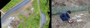 ホタルビオトープの植生管理における採用事例