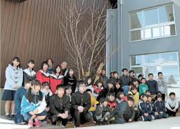 移植された桜の前に集う児童生徒ら