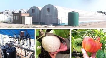 ITで結ぶ農業『 i – 農業』を目指して様々な取組みを行っている。