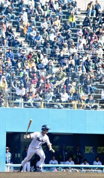 古巣復帰した青木選手に多くのファンが声援を送ったプロ野球オープン戦=6日午後、宮崎市・生目の杜運動公園アイビースタジアム