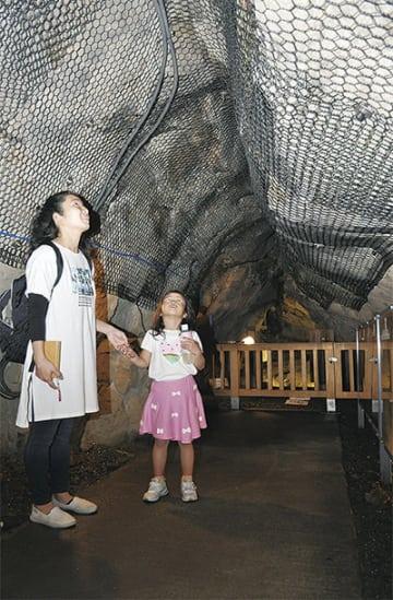 岩屋を散策する親子。洞窟内には江島神社発祥と伝わるほこらなどがある