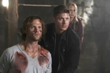 写真は「SUPERNATURAL スーパーナチュラル」シーズン12より - The CW Television Network / Photofest / ゲッティ イメージズ