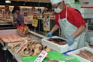 不漁の影響でスルメイカの価格は高騰している=角上魚類高崎店