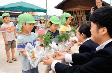 看護学生から花苗を受け取る園児たち