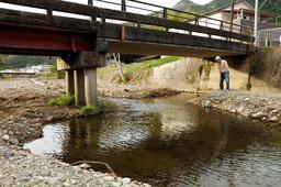 3匹のニシキゴイがいた十明橋下の水たまり。河川改修で逃げ場がなくなっていた=宍粟市山崎町高下