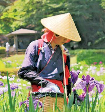 早乙女姿の花摘み娘(=昨年の様子/町田市観光コンベンション協会)