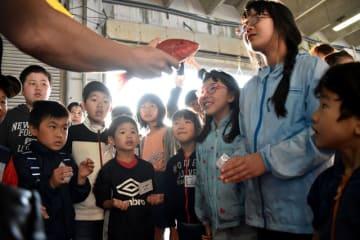 水揚げされた魚に見入る児童ら