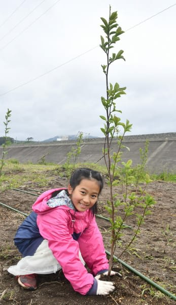 成長を願ってコブシの苗木を植える児童