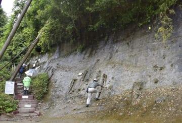「養老川流域田淵の地磁気逆転地層」を訪れた人たち=15日、千葉県市原市