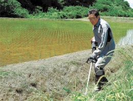 あぜの草刈りに汗を流す石川さん。家庭用と業務用の2本立てのコメ生産に取り組む=栗原市金成