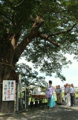 住民の命を守ったムクノキの前で神事を行う会員ら=日田市若宮町の三隈川河畔