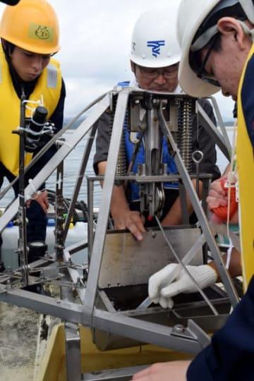 広田湾から採取した堆積物を観察する高田高の生徒ら