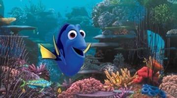映画「ファインディング・ドリー」の一場面 (C)2016 Disney/Pixar