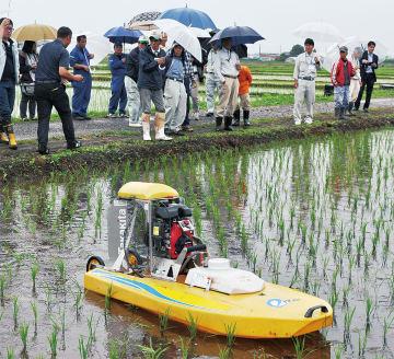 eボートと実験が行われた水田