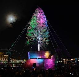 ライトに彩られた巨大ツリー=2017年12月2日、神戸市中央区波止場町