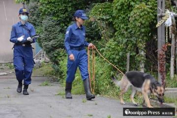 現場付近には警察犬も投入され、捜査活動が続く=22日午前、青森市旭町1丁目