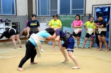 立命大女子相撲部員との取り組みで汗を流す台湾チームの選手たち(6月22日、京都市北区・立命大原谷グラウンド)