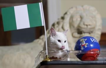 26日、ロシア・サンクトペテルブルクのエルミタージュ美術館でナイジェリアを選ぶアキレス(AP=共同)