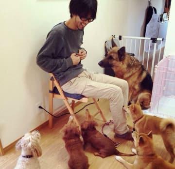 細野 栄作 ドッグトレーナー 犬 いぬ イヌ 愛犬