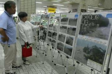 中津市役所本庁舎でパネル展示を見る市民