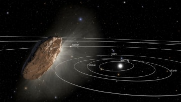 太陽系外から飛来した「オウムアムア」の想像図(NASA提供・共同)