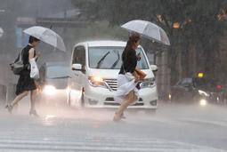 神戸の市街地でも一時、激しい雨で路面がかすんだ=29日午後4時31分、神戸市中央区(撮影・大森 武)