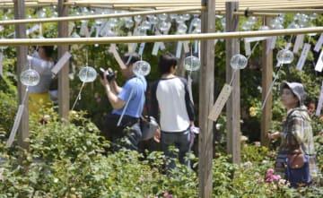 奈良県橿原市の「おふさ観音」で始まった風鈴まつり=1日