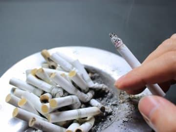 水たばこやシガーバーの扱いは、具体的には決まっていません