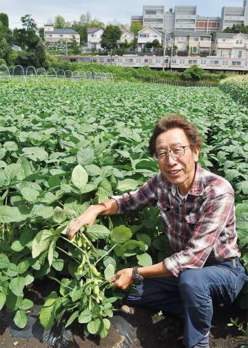 栽培する枝豆を手にする菱山さん=6月14日撮影。収穫してそのまま生で食べることもあるそう