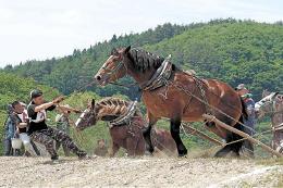 馬も人も力を振り絞って坂を乗り越えた