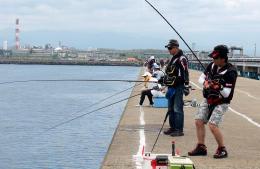 開放された堤防で、多くの人が釣りを楽しんだ