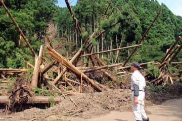豪雨で山が崩れ、大量の土砂や倒木が流れ込んだ府道付近(13日午後3時27分、舞鶴市桑飼上)