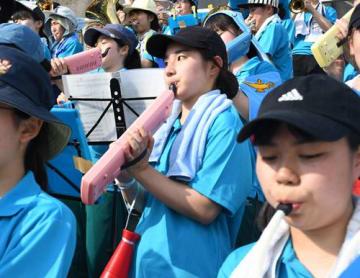 スタンドから演奏で市千葉ナインを応援する川等美咲さん=16日、千葉市の県総合SC野球場