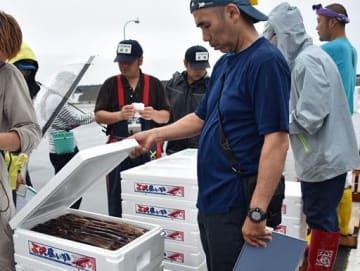 スルメイカを確認しながら入札する買い受け人たち=17日午後5時半、三沢漁港
