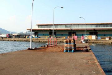 小イワシの入荷が止まっている広島市中央卸売市場の桟橋