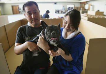 岡山県倉敷市立穂井田小の体育館に開設されたペット同伴者専用の避難所で、愛犬と過ごす同市真備町地区の夫婦。これまで他の自治体の避難所などを転々としてきたという=21日午前10時53分