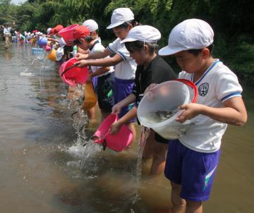 フナの稚魚を川へ放流する大曽根小の児童ら=つくば市栗原の桜川