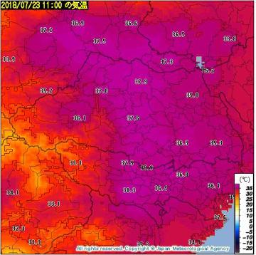 23日(月)午前11時の気温の推計気象分布 出典=気象庁HP