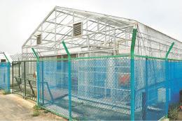 復興プロジェクトとして建設された藻類バイオマスの研究施設。8月以降に新体制の下で活用される=仙台市宮城野区の市南蒲生浄化センター