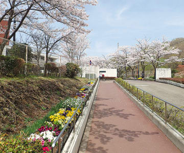 都立多摩桜の丘学園で「夏まつり」7月5日には学校公開も