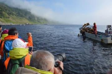 羅臼町崩浜の前浜で天然コンブ漁を行う地元漁師(右奥)