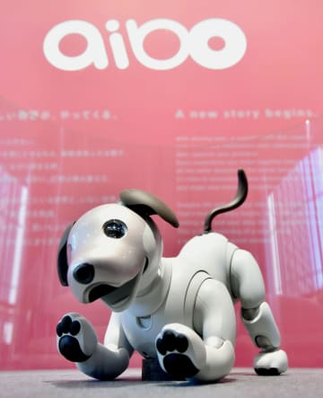 ソニーの犬型ロボット「aibo(アイボ)」=1月、東京都港区の同社本社