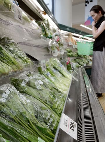「ゆめマート九品寺」の葉物野菜コーナー。猛暑などの影響で近年にない高値が続いている=27日、熊本市中央区