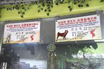 平壌の中央動物園の珍島犬(右)と豊山犬の案内板=28日(共同)