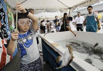 アスパム正面の特設いけすでヒラメ釣りを楽しむ子どもたち