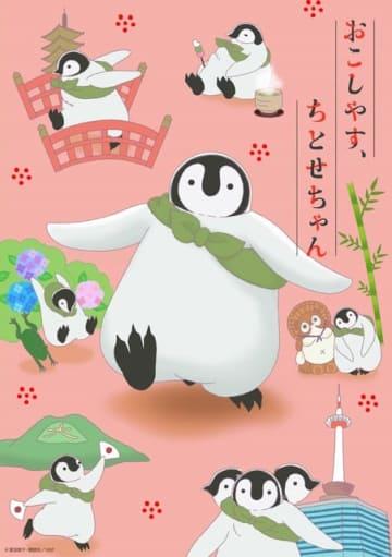 京都にとけこむ癒しのペンギンショート「おこしやす、ちとせちゃん」がアニメ化!
