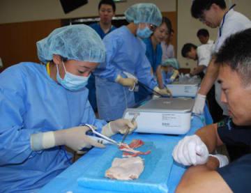 医師に教わりながら手術用具で鶏肉を切る参加者たち(長浜市宮前町・長浜赤十字病院)