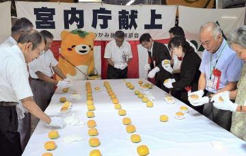 「献上ハウス柿荷造り式」で、特産の種なし柿「刀根早生」を選別する関係者=30日、和歌山県かつらぎ町