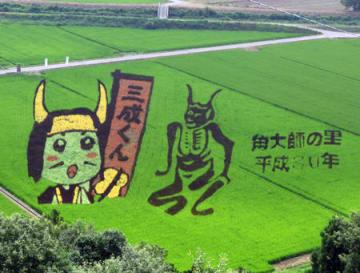 三成くん(左)と角大師がくっきりと描かれた田んぼアート=長浜市大寺町