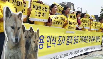 ソウル中心部で開いた記者会見で、犬肉食反対を訴える動物愛護団体=7月27日(聯合=共同)